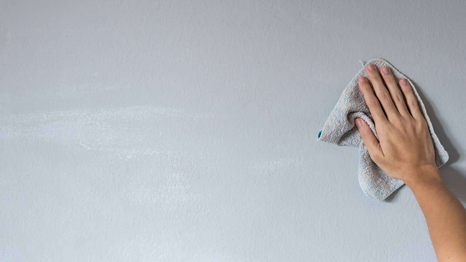How To Wash Walls With Flat Paint